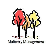 Mulberry Management